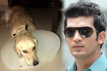 Arjun Bijlani with his pet dog Boozy