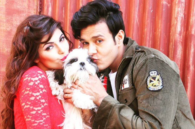 Real to reel: Aniruddh-Shubhi to get married!