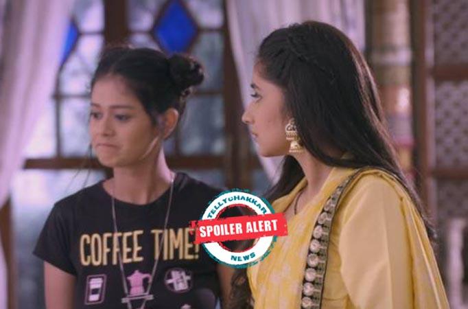 Guddan Tumse Na Ho Payega: Guddan lands in a problem over Alisha's silly game