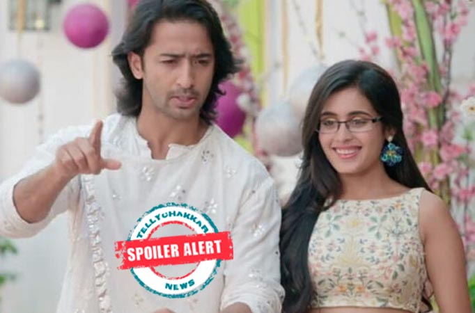 Yeh Rishtey Hain Pyaar Ke: Abeer-Mishti have a memorable moment with their family