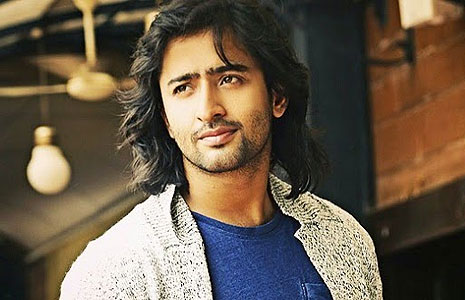 Shaheer Sheikh earned a  million dollar salary, leaving the net worth at 1 million in 2017