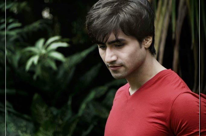 I don't like doing things half-heartedly: Harshad Chopda