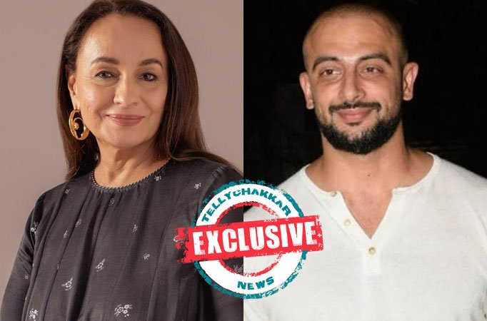 EXCLUSIVE: Soni Razdan and Arunoday Singh to share display screen area in an internet collection
