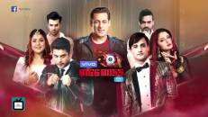 Bigg Boss 13 winner REVEALED ft. Arjun Bijlani