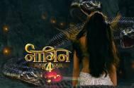 Naagin 4: Sayantani Ghosh to snatch naagmadi from Nayantara and Brinda