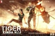 'Tiger Zinda Hai'