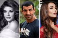 Celebs raise voice after attack on stray dog