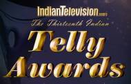 13th Indian Telly Awards