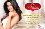 Do you like watching Mallika in Bachelorette India?