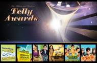 Best Sitcom/Comedy Programme (Fiction) at 13th Indian Telly Awards