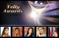 Best Fresh New Face (Female) at the 13th Indian Telly Awards