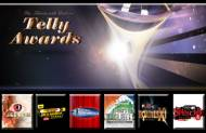 Best Reality Show at the 13th Indian Telly Awards