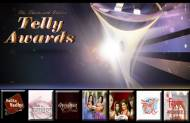 Best Drama Series at the 13th Indian Telly Awards?