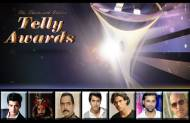 Best Actor in a Negative Role at the 13th Indian Telly Awards?