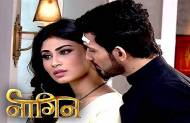 Naagin ends: Will you miss the show?
