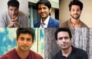 Eijaz Khan, Hiten Tejwani, Karan Wahi, Siddharth Shukla, Iqbal Khan