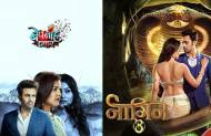 Pearl V Puri in Bepannah Pyaar or Naagin 3?