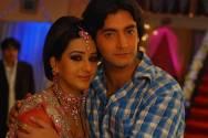 Vineet Raina and Shilpa Shinde