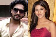 Rohit Purohit and Vibha Anand