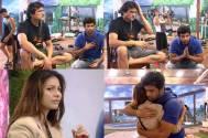 Kushal and Tanisha call a truce in Bigg Boss