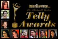 The 13th Indian Telly Awards-Nomination List