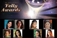 13th Indian Telly Awards: Best Actor in a Lead Role (Female)