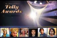 13th Indian Telly Awards: Best Actor in a Supporting Role (Drama)