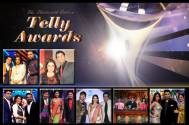 13th Indian Telly Awards: Best Judge on a TV show