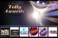 13th Indian Telly Awards: Best Youth Show (Fiction)