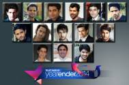 2014: TV Face of the Year (Male)