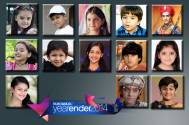 2014: Wonder Kids of Indian Television