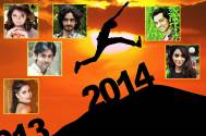2014: The Year That Was for TV Stars