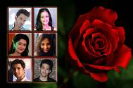 Happy Rose Day: TV stars pick roses for their industry friends