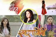Prediction: Fate of Star Plus' Tere Sheher Mein and Colors' Swaragini