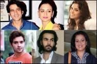 Hiten, Gauri, Adaa, Srman, Karan, Mona join Zee TV