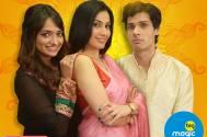 Kamya Punjabi bags a new show