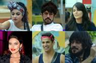 Revealed: Bigg Boss 9 nomination list this week