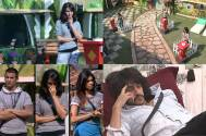 Synopsis: Bigg Boss Double Trouble Day 88