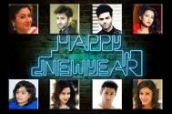 TV celebs and their New Year plans