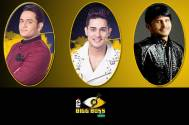 Bigg Boss 11: Are Vikas and Priyank boyfriends? KRK thinks so