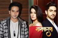 Puru Chibber quits 'Naamkarann'