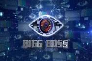 Bigg Boss 11 Sshivani Durga, Sapna Chaudhry, Jyoti Kumar
