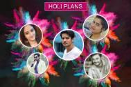 Holi8 Plans