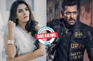 Pooja Gor &  Salman Khan's next on Sony TV