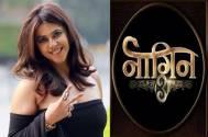Ekta Kapoor REVEALS her first Naagin