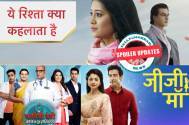 Kartik fills Naira's maang in Yeh Rishta, Sanchi to accept Kabir as husband in Savitri Devi?, Falguni to regain memory in Jiji Maa, and other Spoiler Updates...
