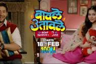 All the details on the cast of SAB TV's Baavle Utaavle