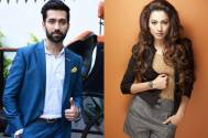 THIS is what Nakuul Mehta and Gauahar Khan