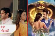What's 'COMMON' between Yeh Hai Mohabbatein and Naagin 3 actors?