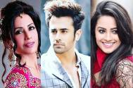 'THIS' is what Mreenal Deshraj has to say about Pearl V Puri and Anita Hassanandani's CHEMISTRY!